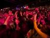 Dionysos - Docks des Suds - Marseille - 20-10-2012