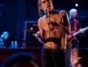 image du spectacle - Iggy Pop And The Stooge - Pavillon de Grignan - Istres 12-07-10