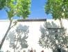 Isaya - Dans la Rue - Istres - 21-06-2016 - Balances - Isaya - Dans la Rue - Istres - 21-06-2016 - Balances