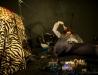 photo accreditée - Oh! Tiger Mountain - Théâtre Les Argonautes - Marseille - 28 08 2014