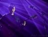 image du concert - Safia Nolin - Paloma - Nîmes - 02-12-2015