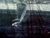 Steven Wilson - Bataclan - Paris - 26-10-11