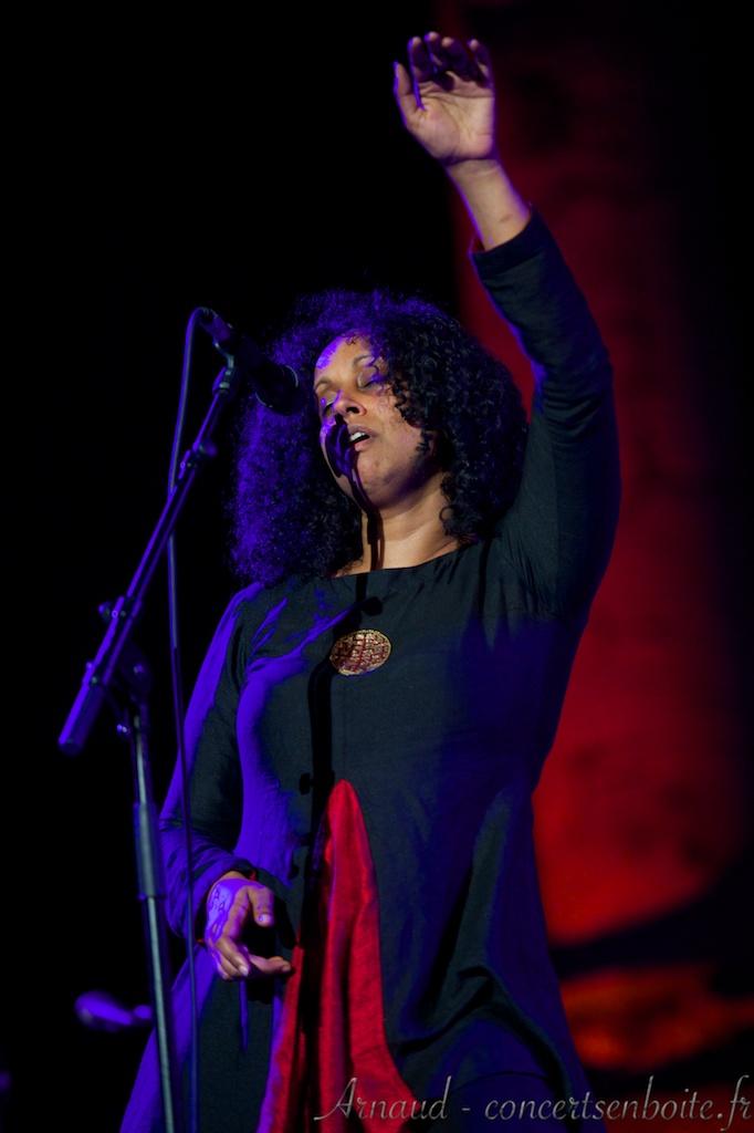 photo live de Susheela Raman