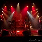 Photo du concert de The Magnets