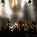 Photo du concert de The Hyènes