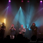 Photo du concert de The Herbaliser