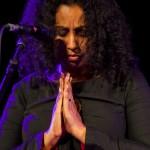 Photo du concert de Susheela Raman