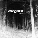 Image pour article The Cure – A Forest