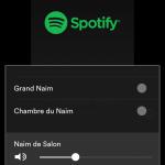Image pour article Spotify dans mon environnement
